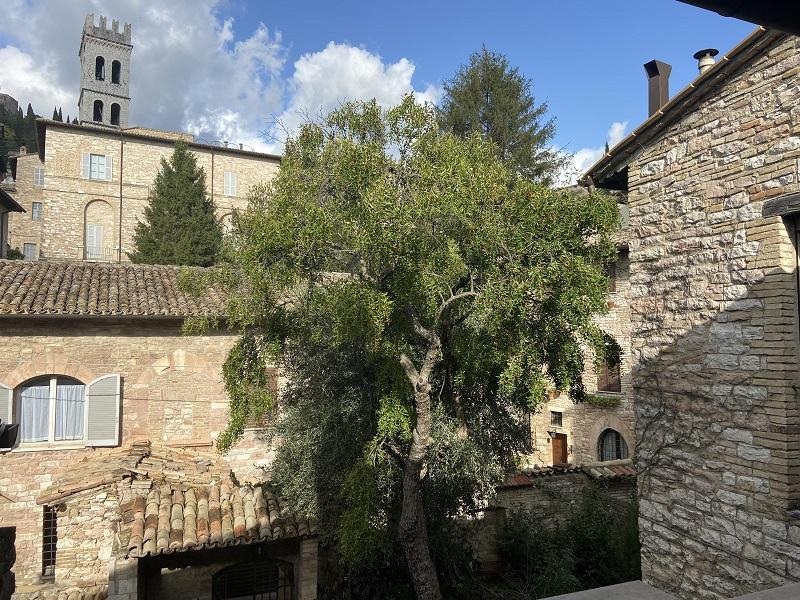Vendita Appartamento Assisi / Sell Apartment Assisi – Via Terz'Ordine